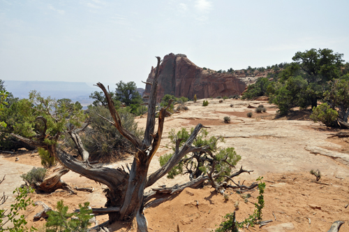 The Two Rv Gypsies At Canyonlands National Park In Utah