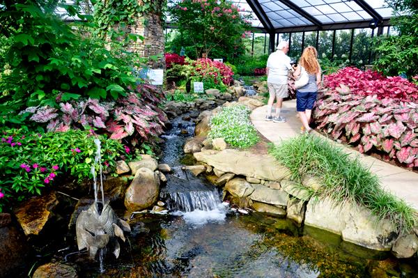 Index Of Usa Trip7 2014 14 Huntsville Decatur Al Huntsville Botanical Garden Flowers