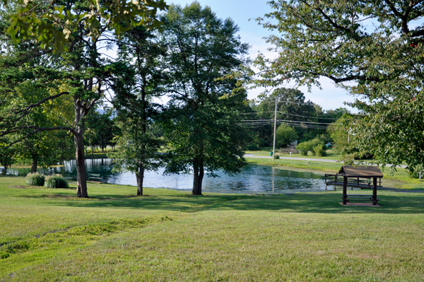 Carillon Pond Park And The Singing Tower In Luray Virginia