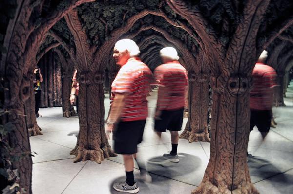 The Enchanted Dragon Mirror Maze In Front Royal Virginia
