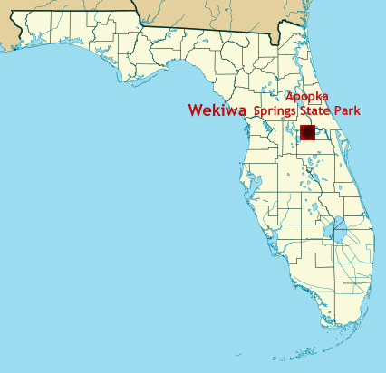 Apopka Florida Map.Alligators And Turtles At Wekiwa Springs State Park