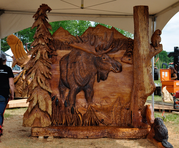 Chetwynd 2016 Chainsaw Carving Competition